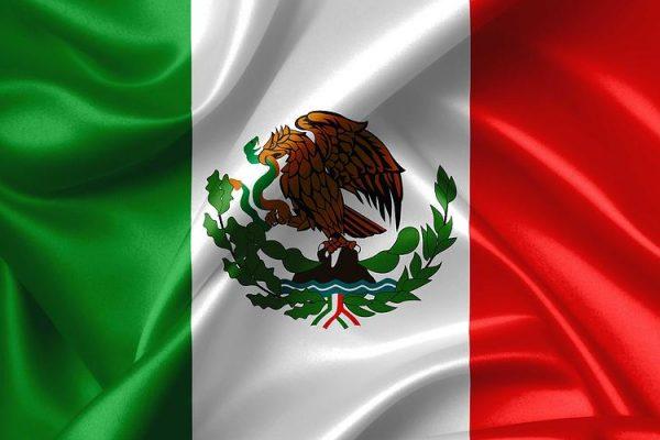 mexican-flag-nomonkey-b
