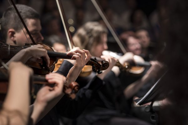 violins, musicians, orchestra-1838390.jpg